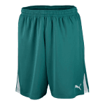 Team Shorts w o inner slip team green-wh