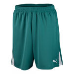 Šortky Puma Team Shorts w o inner slip team green-wh