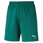 Velize Shorts w- innerslip team green