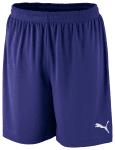 Velize Shorts w- innerslip team violet-p