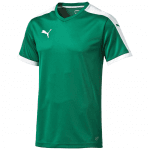 Pitch Shortsleeved Shirt power green-whi