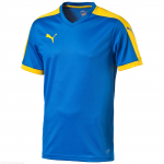 Dres Puma Pitch Shortsleeved Shirt  royal-team