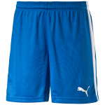 Šortky Puma Pitch Shorts Without brief royal-wh