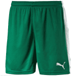 Pitch Shorts Without Innerbrief power gr