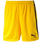 Šortky Puma Pitch Shorts Without Innerbrief team yel