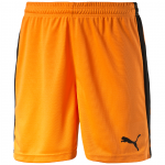 Šortky Puma Pitch Shorts Without Innerbrief team ora