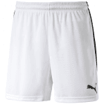 Pitch Shorts WithInnerbrief white-black