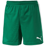 Pitch Shorts WithInnerbrief power green-