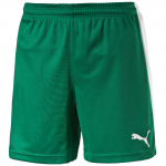 Šortky Puma Pitch Shorts WithInnerbrief power green-