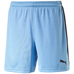 Šortky Puma Pitch Shorts WithInnerbrief team pearl b