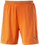 stadium gk short goalkeeper short