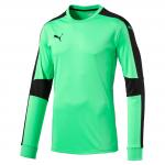 Dres s dlouhým rukávem Puma Triumphant GK Shirt fluro green
