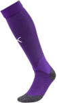 Team LIGA Socks Prism Violet- White