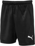 Liga Shorts