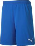 Puma teamFINAL 21 knit Shorts Rövidnadrág