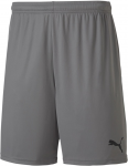teamGOAL 23 knit short