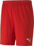 teamGOAL 23 knit Shorts