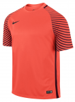 Dres Nike Gardien