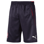 Czech Republic Training Shorts