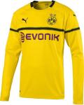 BVB Dortmund UCL 2018/2019