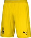 BVB Dortmund away 2018/2019