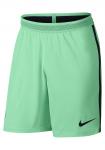 Šortky Nike Vapor FC Barcelona 2016/17