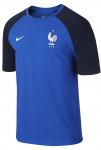 Triko Nike FFF MATCH TEE