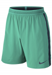 Šortky Nike M NK FLX STRKE SHORT W