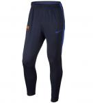 Kalhoty Nike FCB Y NK SQD PANT KPZ