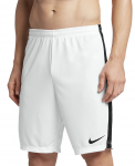 Šortky Nike Dry