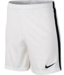 Kraťasy Nike Dry Academy