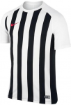 striped segment iii