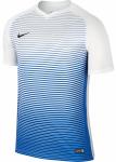 Dres Nike Dry Precision IV