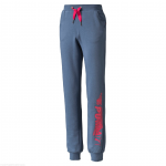 Kalhoty Puma FUN IND Graphic ESS Sweat Pants-Terry G