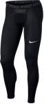 Kalhoty Nike M NP TGHT