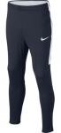 Kalhoty Nike Y NK DRY PANT ACDMY KPZ