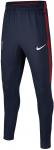 Kalhoty Nike PSG Y NK DRY SQD PANT KP