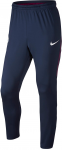 Kalhoty Nike MCFC M NK DRY SQD TRK PANT KPZ