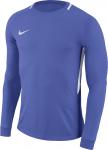 Pánský brankářský dres s dlouhým rukávem Nike Dry Park III