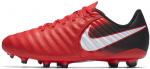 Kopačky Nike JR TIEMPO LIGERA IV FG