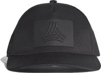 FS CAP