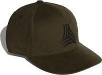 FS S16 CAP
