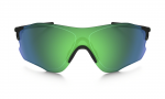 EVZero Path Polarized – 2