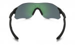 EVZero Path Polarized – 3