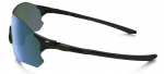 EVZero Path Polarized – 4