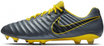 Ghete de fotbal Nike LEGEND 7 ELITE FG