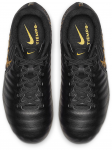 Dětské kopačky Nike Tiempo Legend VII Academy MG
