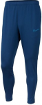 Kalhoty Nike Academy 19 Dri-fit