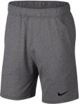 Shorts Nike M NK DRY SHORT HPRDRY LT