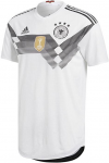 DFB authentic home 2018
